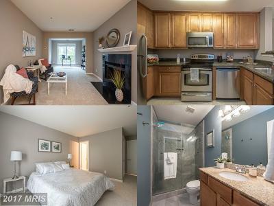 Oakton Condo For Sale: 3175 Summit Square Drive #D9