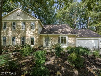 Vienna Single Family Home For Sale: 1801 Batten Hollow Road