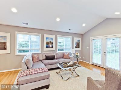 Falls Church Single Family Home For Sale: 3297 Annandale Road