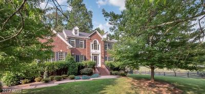 Fairfax Single Family Home For Sale: 12524 Chronical Drive