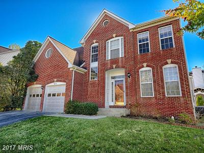 Herndon Single Family Home For Sale: 2418 Dakota Lakes Drive