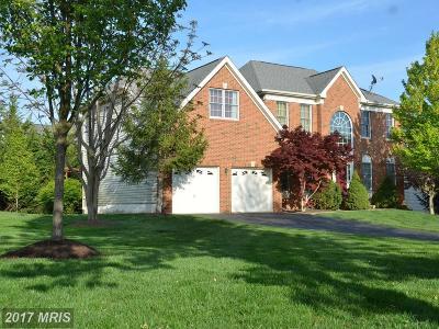 Herndon Single Family Home For Sale: 13361 Horsepen Woods Lane