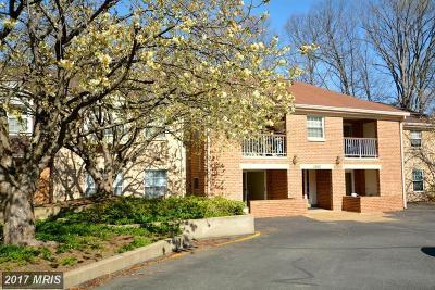 Burke Rental For Rent: 5920 Cove Landing Road #101