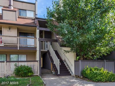 Fairfax Condo For Sale: 3968 Woodhue Place #8