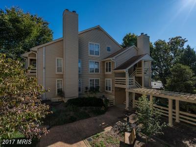 Alexandria Condo For Sale: 6601 Jupiter Hills Circle #J
