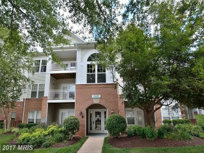 Reston Condo For Sale: 1509 North Point Dr #102