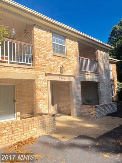 Burke Rental For Rent: 5906 Cove Landing Road #101