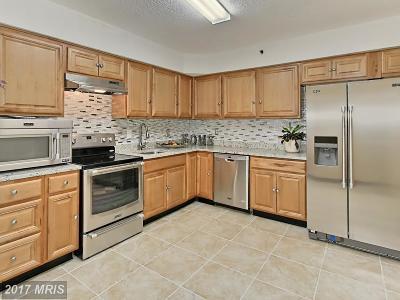 Falls Church Condo For Sale: 3713 George Mason Drive #311