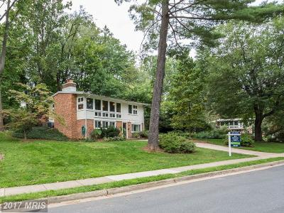 Falls Church Single Family Home For Sale: 3002 Pine Spring Road