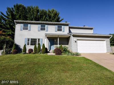 Fairfax Single Family Home For Sale: 3017 Steven Martin Drive
