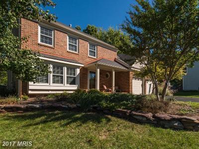 Herndon Single Family Home For Sale: 13216 Ladybank Lane