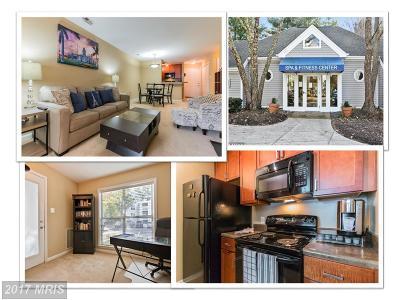Oakton VA Condo For Sale: $224,900