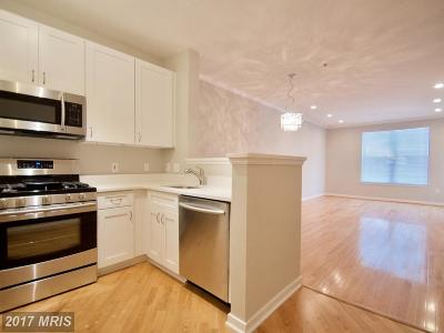 Mclean, Mc Lean Condo For Sale: 1625 International Drive #212