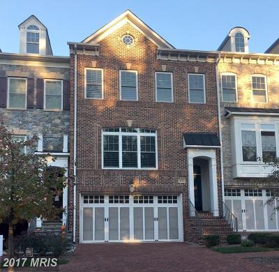 Falls Church Rental For Rent: 6775 Darrells Grant Place