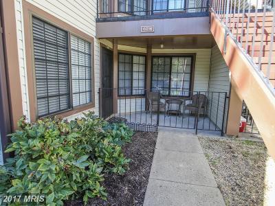 Alexandria Condo For Sale: 6016 Curtier Drive #A