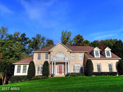 Reston Single Family Home For Sale: 11296 Stones Throw Drive
