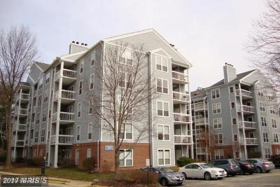 Fairfax, Fairfax City Condo For Sale: 3176 Summit Square Drive #4-D7