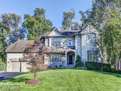 Reston Single Family Home For Sale: 12041 Creekbend Drive