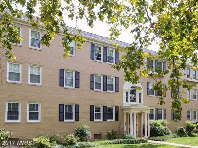 Alexandria Rental For Rent: 6726 Wakefield Drive #A1