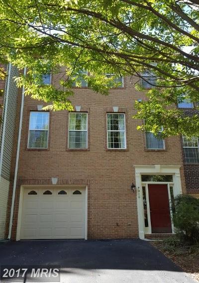 Fairfax Rental For Rent: 4016 Rosemeade Drive