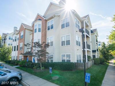 Fairfax Condo For Sale: 4139 Fountainside Lane #F302