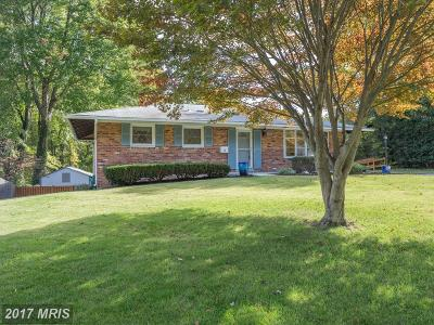 Annandale Single Family Home For Sale: 6821 Murray Lane