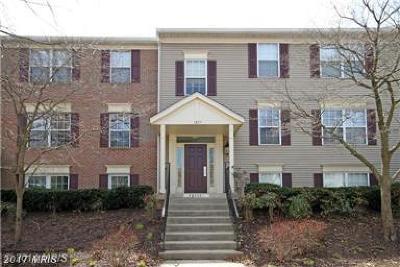 Fairfax Rental For Rent: 12111 Greenway Court #101
