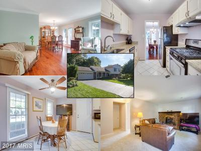Fairfax Single Family Home For Sale: 5511 Shooters Hill Lane