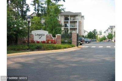 Fairfax Rental For Rent: 12124 Garden Ridge Lane #303
