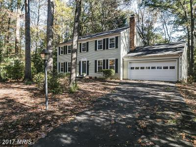 Reston Single Family Home For Sale: 11710 Blue Smoke Trail