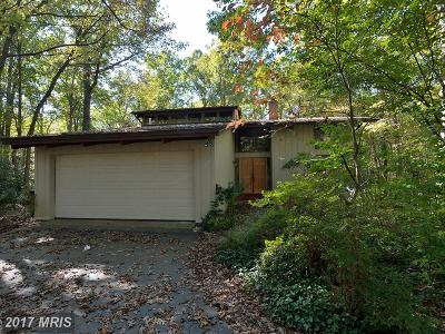 Reston Single Family Home For Sale: 10907 Thanlet Lane