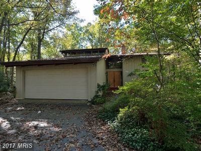 Reston Single Family Home For Sale: 10907 Thanlet Lane