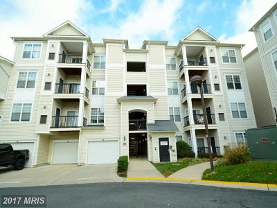 Fairfax Condo For Sale: 11345 Aristotle Drive #6-413