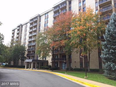 Falls Church Condo For Sale: 3100 Manchester Street #705A