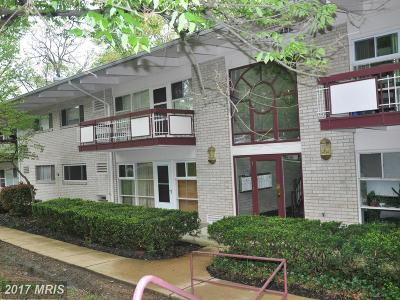 Annandale Condo For Sale: 7723 Donnybrook Court #106