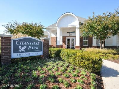 Chantilly Condo For Sale: 3820 Lightfoot Street #315