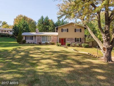 Annandale Single Family Home For Sale: 3704 Sprucedale Drive