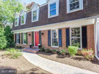 Vienna Single Family Home For Sale: 211 Ceret Court SW