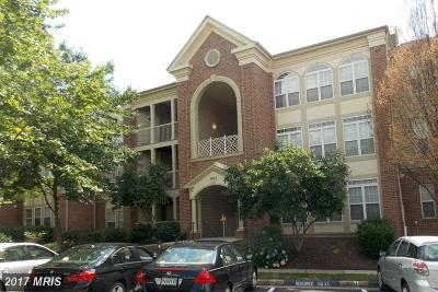Alexandria Condo For Sale: 6603 Thackwell Way #C