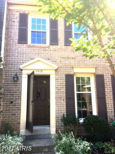 Annandale Rental For Rent: 4419 Chase Park Court