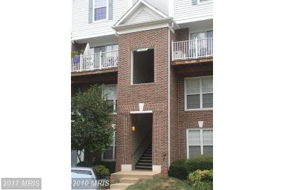 Falls Church Condo For Sale: 2230 George C Marshall Drive #1200