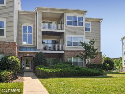 Great Falls Residential Lots & Land For Sale: 9109 Dara Lane