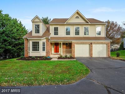 Herndon Single Family Home For Sale: 13142 Ladybank Lane