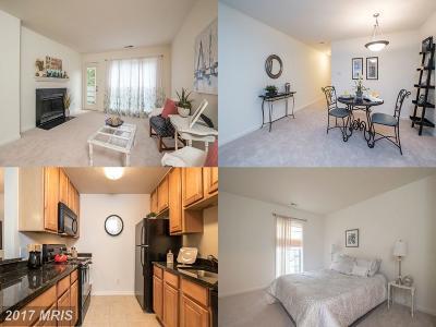 Oakton Condo For Sale: 10300 Appalachian Circle #208
