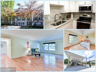 McLean Condo For Sale: 7651 Tremayne Place #211