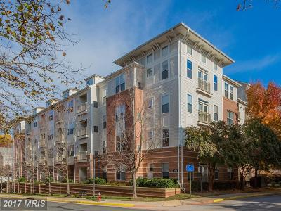 Vienna Condo For Sale: 2791 Centerboro Drive #487
