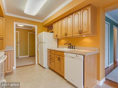 Oakton Condo For Sale: 3031 Borge Street #204