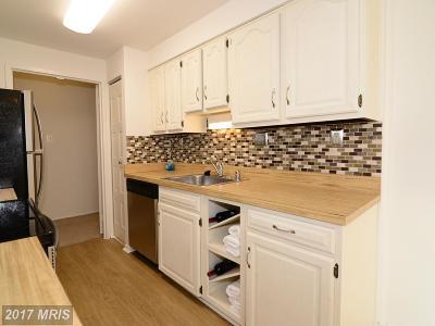 Oakton Rental For Rent: 3031 Borge Street #107