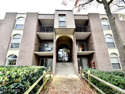 Annandale Condo For Sale: 3316 Woodburn Village Drive #T3
