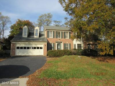Chantilly Single Family Home For Sale: 4606 Sutton Oaks Drive